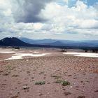 Poomice Desert Oregon