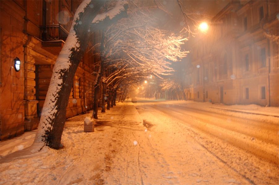 Popova street