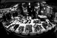Popular market, fish for sale