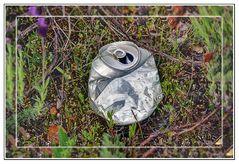Por favor mantengamos los bosques limpios!!!