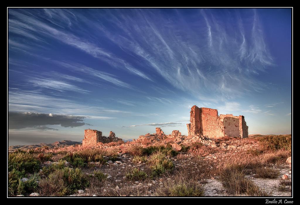 Por los campos de Jumilla (Murcia)