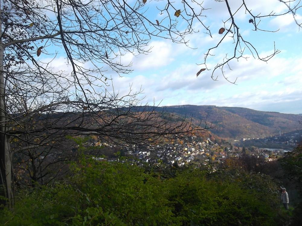 POR OTRO LUGAR | Heidelberg