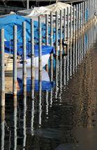 Port de Bienne