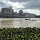 port industriel Bayonne