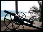 Port Macquarie's Kanone