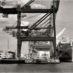 Port of Baltimore No.5 - Container Ship at Seagirt Marine Terminal