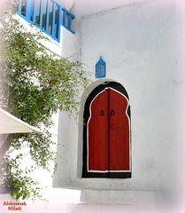 Porte à Sidi Bou Said