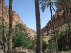 Porte du sahara