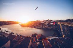 Porto - Panorama im Sonnenuntergang
