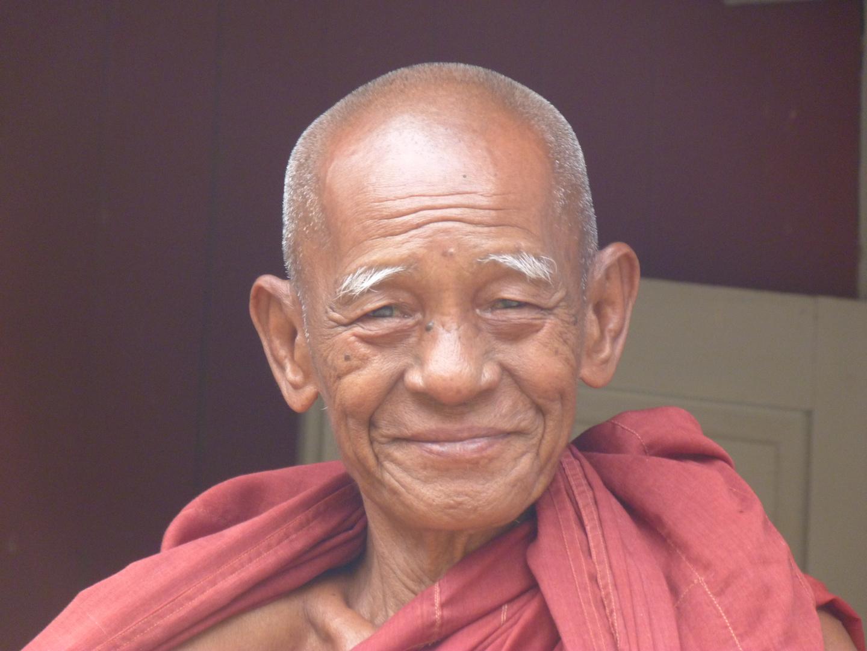 portrait d'un moine Birman