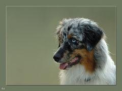 Portrait Sadie 2