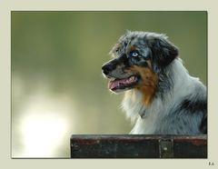 Portrait Sadie 3
