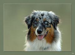 Portrait Sadie 4