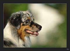 Portrait Sadie 5