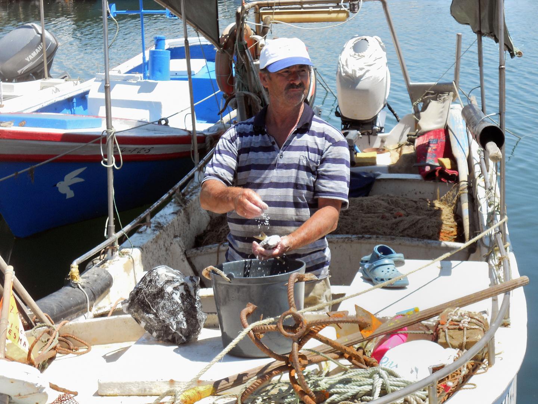 Portugiesischer Fischer bei der Arbeit