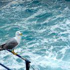 Posada sobre el mar