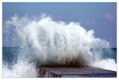 Poseidon's Griff Reload 2008