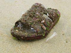 Poseidons shoe