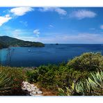 Post card from Isola d'Elba