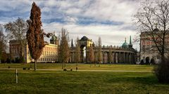 Potsdam Schlosspark Januar 2020- Neues Palais -