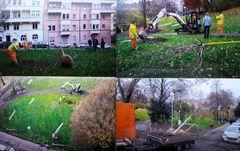 PP 4 Reportagefotos vom Park - Baumpflanzung