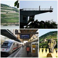 PP Rhein Collage_20210722_192113