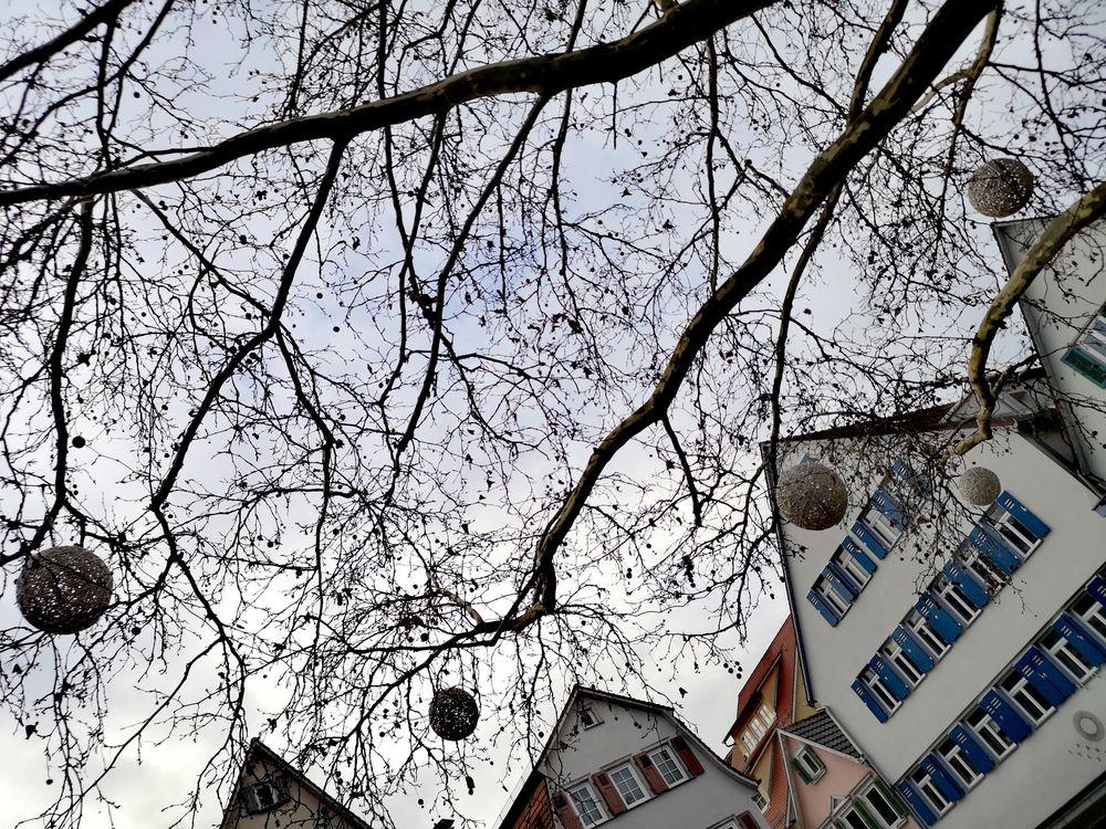 PP_street _Kugel am Baum TÜ p20_21-42-col +LINK
