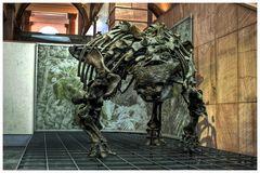 Prähistorische Kuh :)