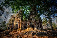Pram Tempel Tempel 1