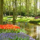 Precioso paisaje en un parque de Holanda