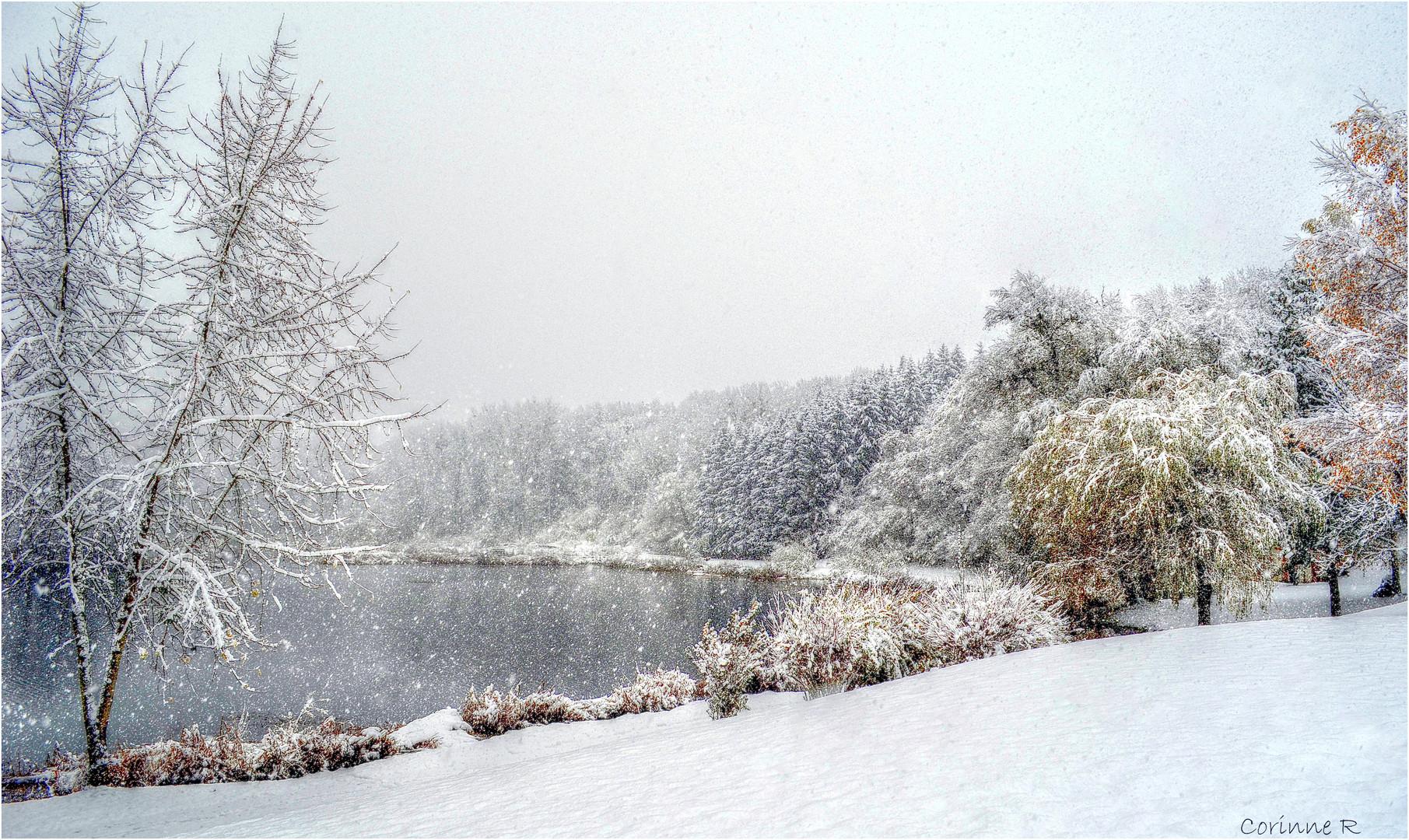 Première neige sur mon petit lac