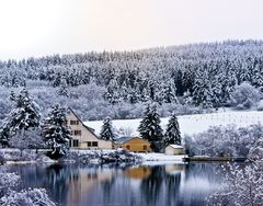 Premières neiges au Guéry (63)