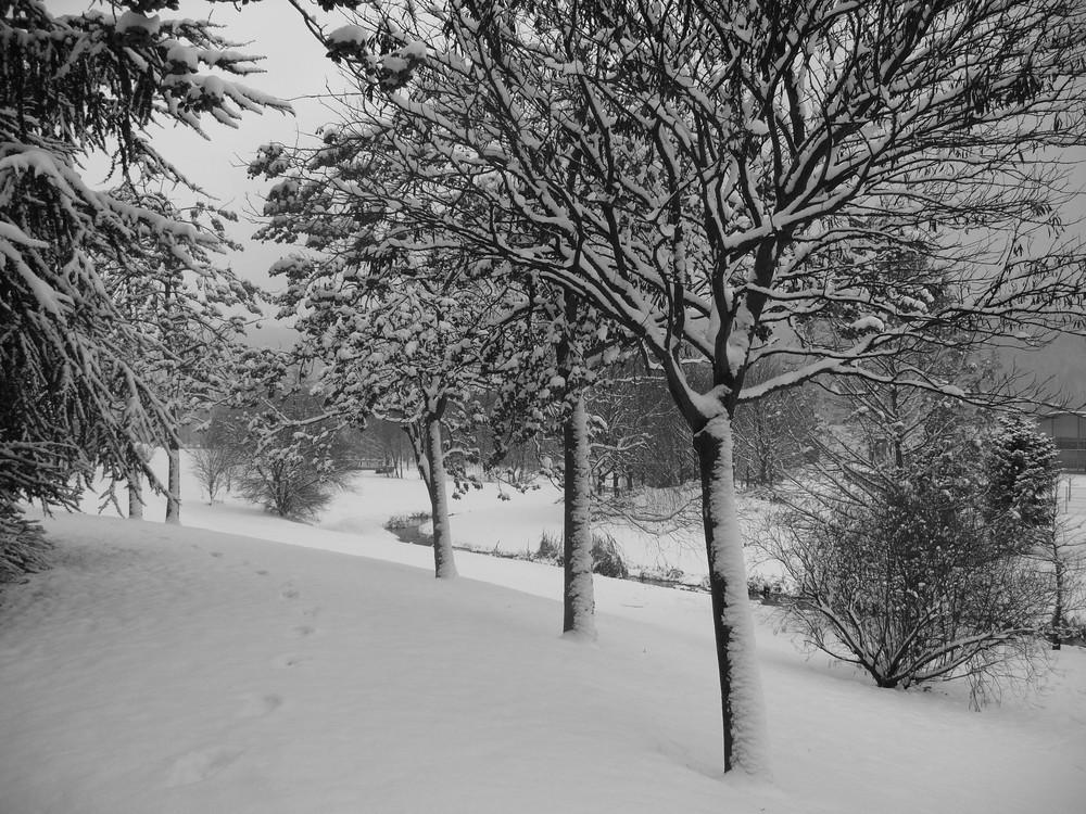 premières neiges dans la vallée