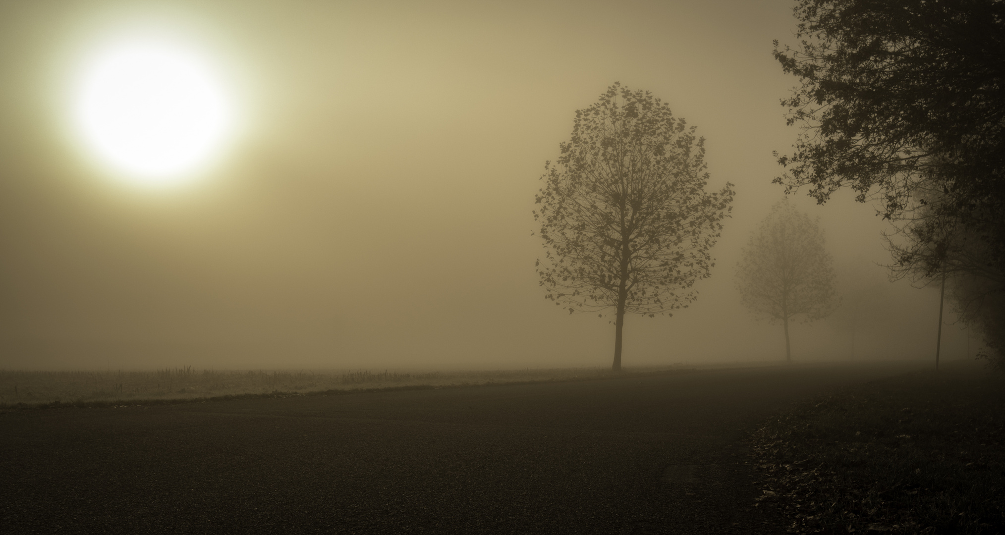 Près de Strasbourg, ce matin...
