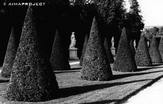 Presences © Aimaproject