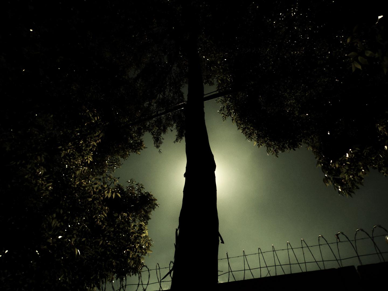 Preso en la oscuridad.