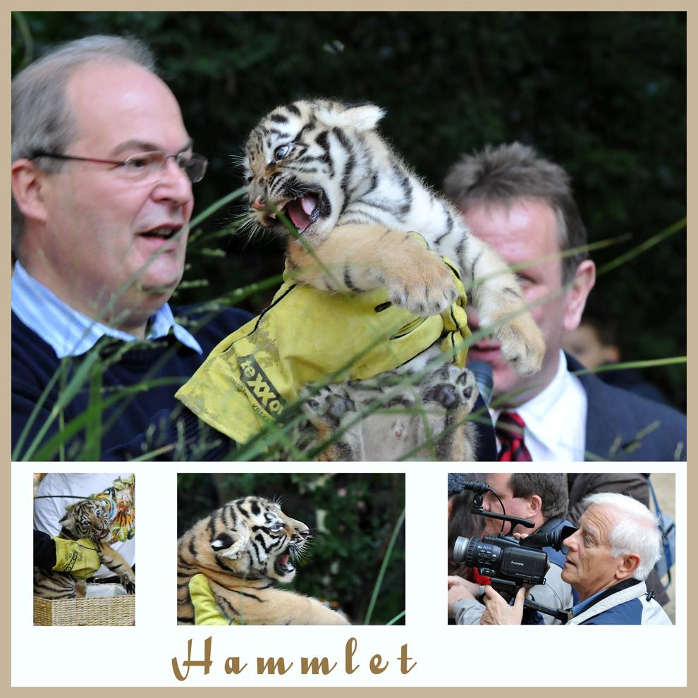 Presserummel im Hammer Tierpark