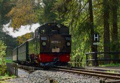 Pressnitztalbahn 5