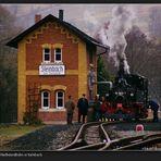 Preßnitztalbahn at Steinbach