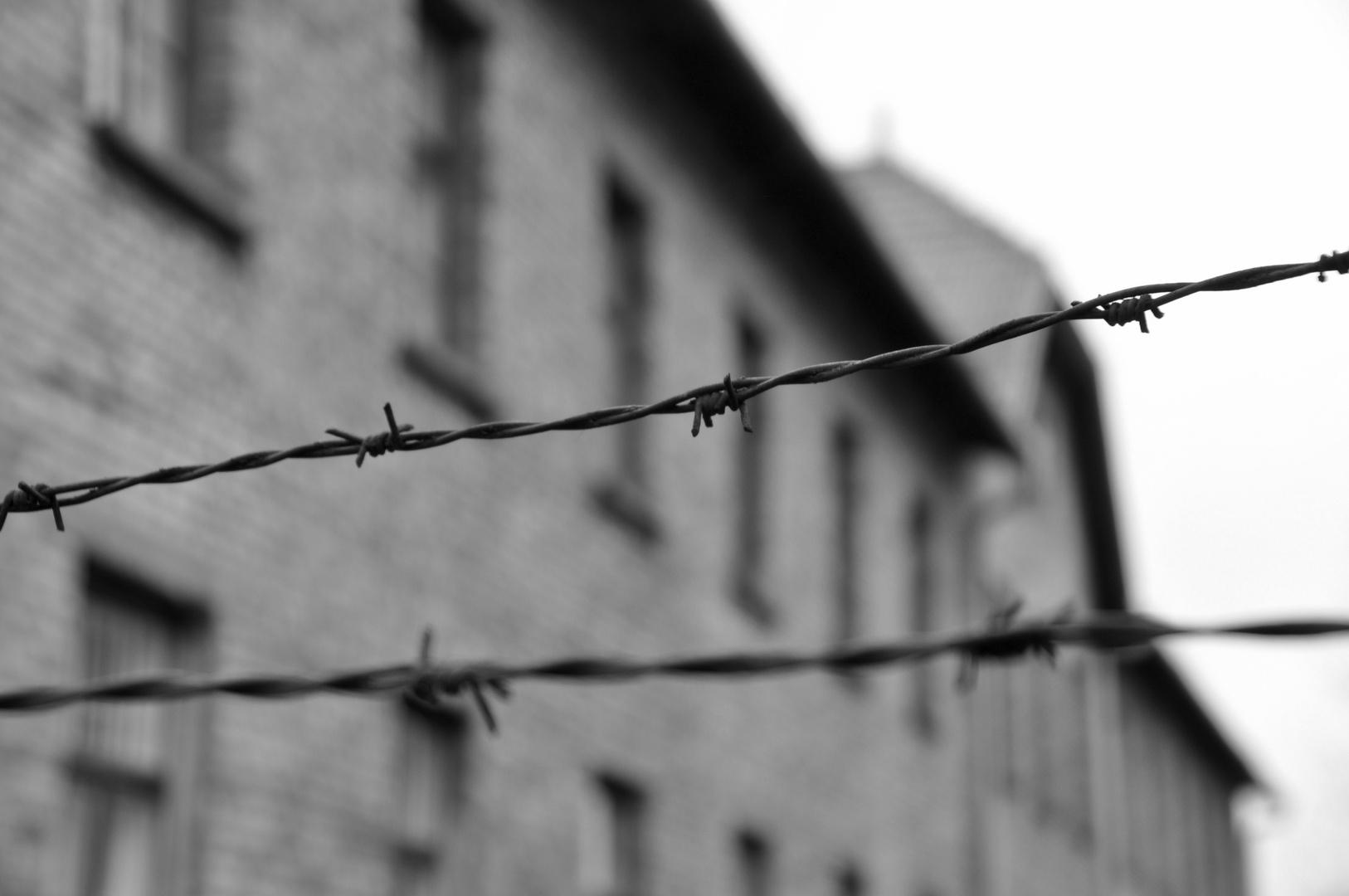 prigionia ...
