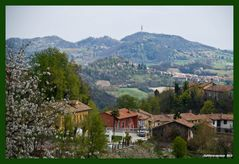 primavera in collina