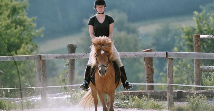 Princessa im Einklang mit der Reiterin