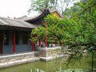 printemps dans un jardin chinois