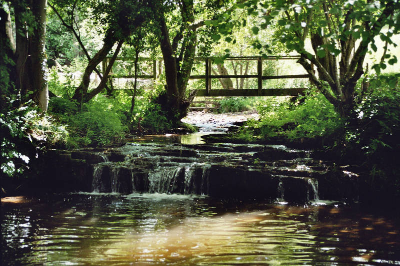 Priory Brook