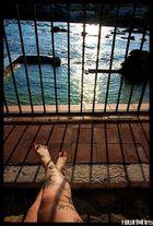 Prison or Paradise ?