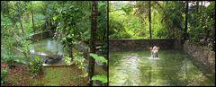 Privat-Naturbad