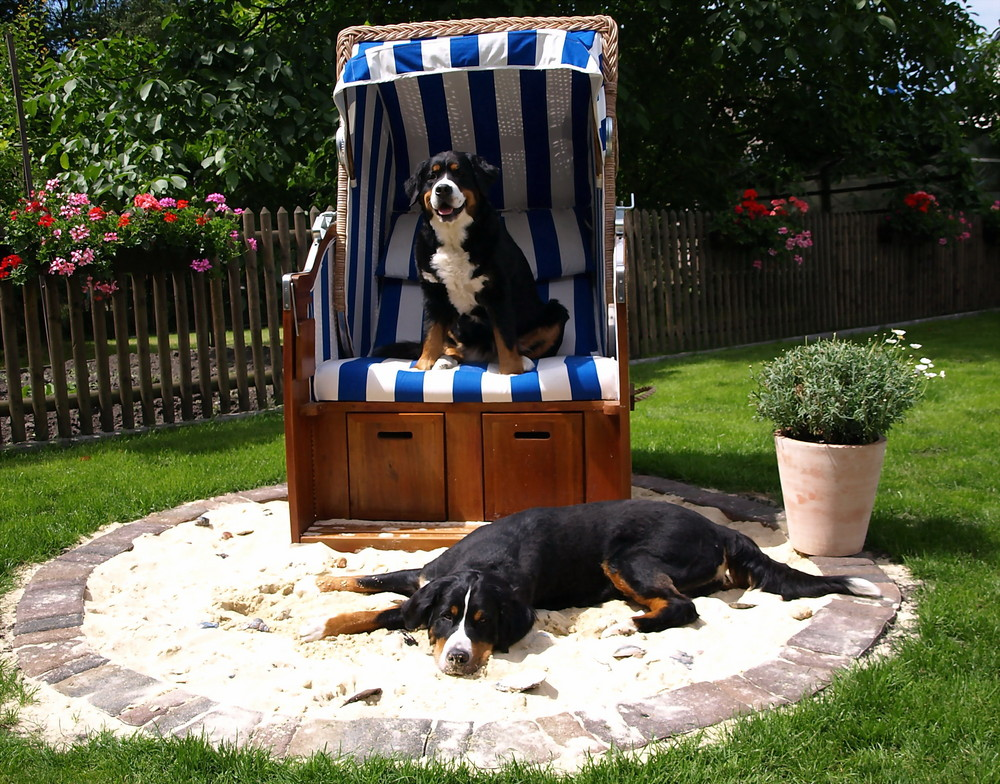 Privater Hundestrand