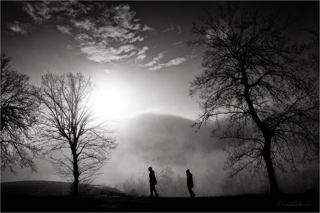 ..profumo di nebbia-bn!
