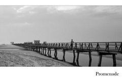 Promenade -3-