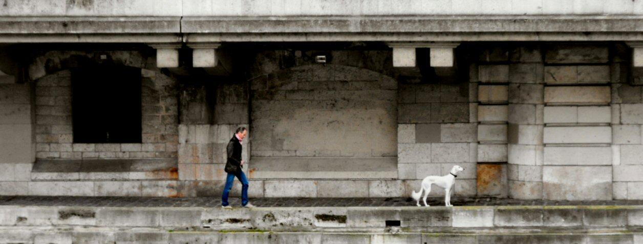 Promenade au bord de La Seine...